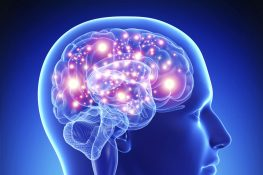 IncreasingYour Brain's Performance