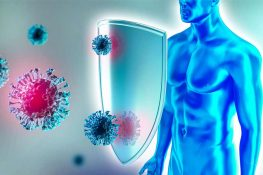 Immune System and Why it's Your First Defense Against Invasion